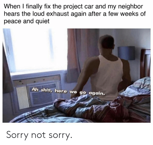 Of Peace: When I finally fix the project car and my neighbor  hears the loud exhaust again after a few weeks of  peace and quiet  Ah sh, here we go again. Sorry not sorry.