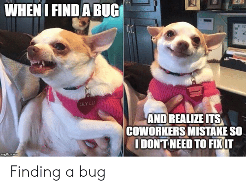 lily: WHEN I FIND A BUG  LILY LU  AND REALIZE ITS  COWORKERS MISTAKE SO  IDONT NEED TO FIXIT  imgflip.com Finding a bug