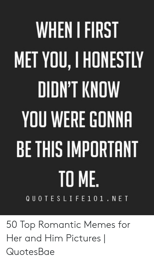 Romantic Memes: WHEN I FIRST  MET YOU, I HONESTLY  DIDN'T KNOW  YOU WERE GONNA  BE THIS IMPORTANT  TO ME  QUOTESLIFE 1 01.NET 50 Top Romantic Memes for Her and Him Pictures   QuotesBae