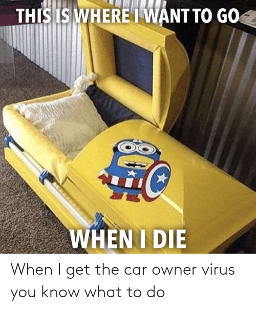 What To Do: When I get the car owner virus you know what to do