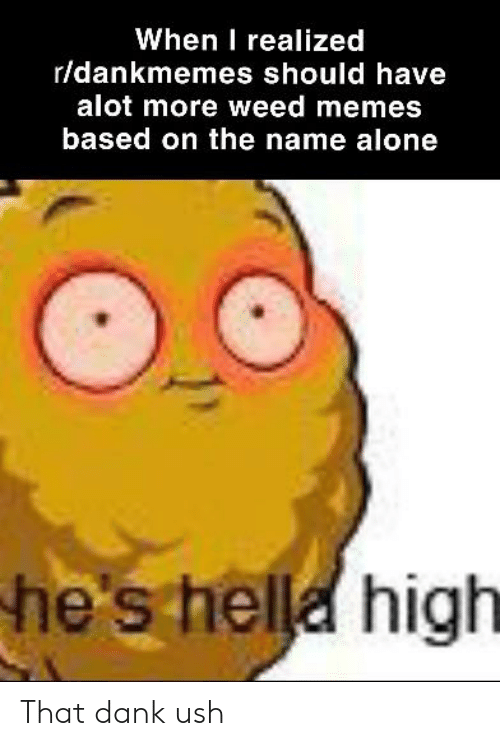 Weed Memes: When I realized  r/dankmemes should have  alot more weed memes  based on the name alone  he's hella high That dank ush