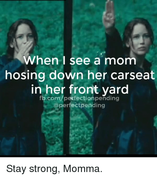 Dank, 🤖, and Yard: when I see a mom  hosing down her carseat  in her front yard  fb.com/perfectionpending  @perfectpending Stay strong, Momma.