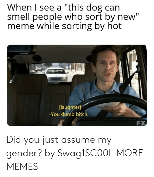 """Assume My Gender: When I see a """"this dog can  smell people who sort by new""""  meme while sorting by hot  laughter]  -You dumb bitch.  FX Did you just assume my gender? by Swag1SC00L MORE MEMES"""