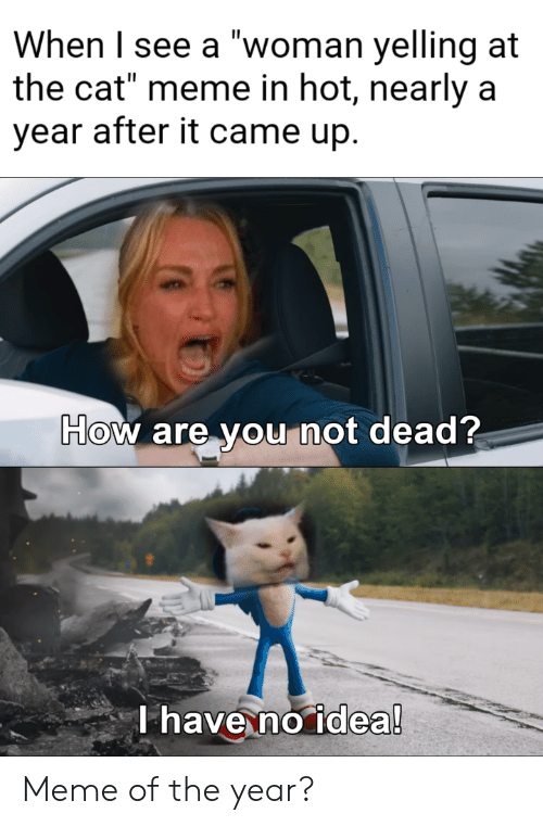 """yelling: When I see a """"woman yelling at  the cat"""" meme in hot, nearly a  year after it came up.  How are you not dead?  T have no idea! Meme of the year?"""