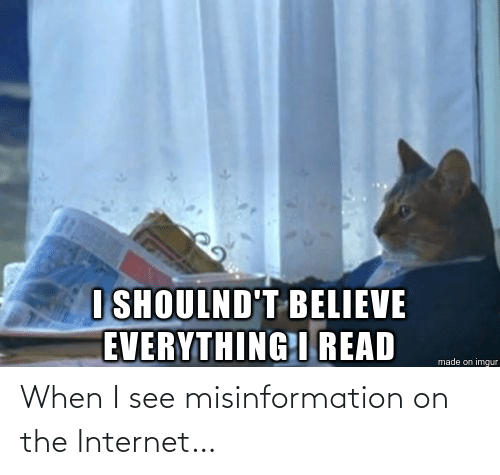 misinformation: When I see misinformation on the Internet…