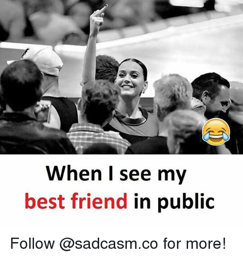 Best Friend, Memes, and Best: When I see my  best friend in public Follow @sadcasm.co for more!