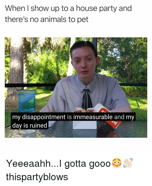 gooo: When I show up to a house party and  there's no animals to pet  my disappointment is immeasurable and my  dav is ruined Yeeeaahh...I gotta gooo😳👋🏻 thispartyblows