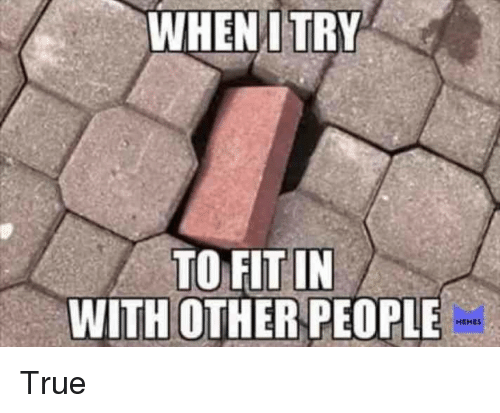 People Memes: WHEN I TRY  TO FIT IN  WITH OTHER PEOPLE  MEMES True