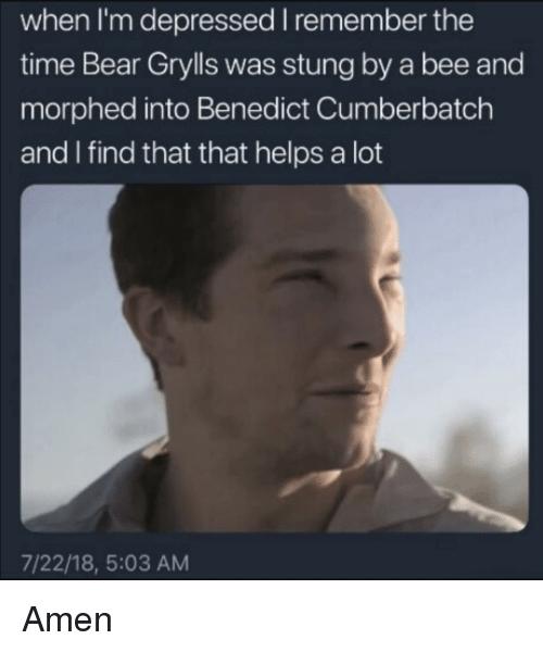 Benedict Cumberbatch: when I'm depressed I remember the  time Bear Grylls was stung by a bee and  morphed into Benedict Cumberbatch  and I find that that helps a lot  7/22/18, 5:03 AM Amen