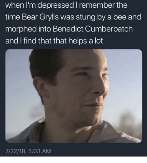 Benedict Cumberbatch: when I'm depressed I remember the  time Bear Grylls was stung by a bee and  morphed into Benedict Cumberbatch  and I find that that helps a lot  7/22/18, 5:03 AM