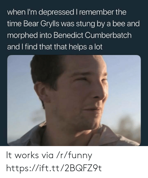 Benedict Cumberbatch: when I'm depressed I remember the  time Bear Grylls was stung by a bee and  morphed into Benedict Cumberbatch  and I find that that helps a lot It works via /r/funny https://ift.tt/2BQFZ9t