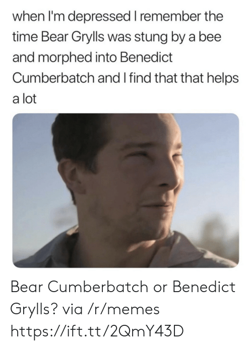 Benedict Cumberbatch: when I'm depressed I remember the  time Bear Grylls was stung by a bee  and morphed into Benedict  Cumberbatch and I find that that helps  a lot Bear Cumberbatch or Benedict Grylls? via /r/memes https://ift.tt/2QmY43D