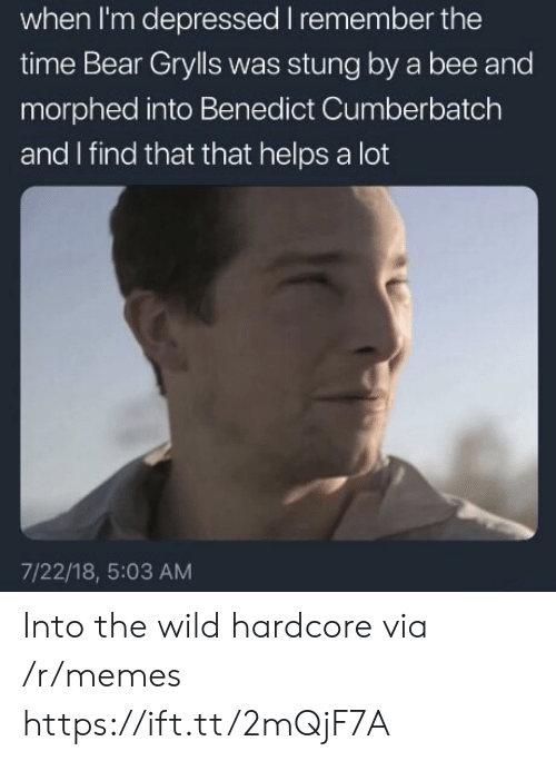 Benedict Cumberbatch: when I'm depressed I remember the  time Bear Grylls was stung by a bee and  morphed into Benedict Cumberbatch  and I find that that helps a lot  7/22/18, 5:03 AM Into the wild hardcore via /r/memes https://ift.tt/2mQjF7A