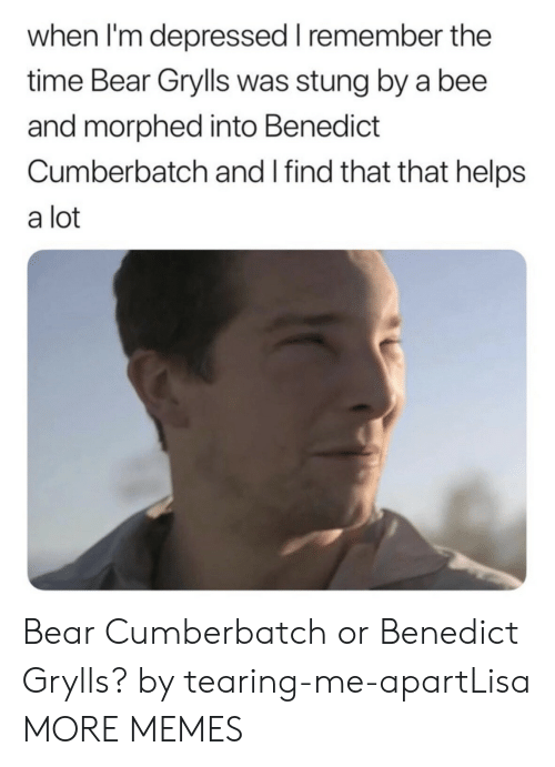 Benedict Cumberbatch: when I'm depressed I remember the  time Bear Grylls was stung by a bee  and morphed into Benedict  Cumberbatch and I find that that helps  a lot Bear Cumberbatch or Benedict Grylls? by tearing-me-apartLisa MORE MEMES