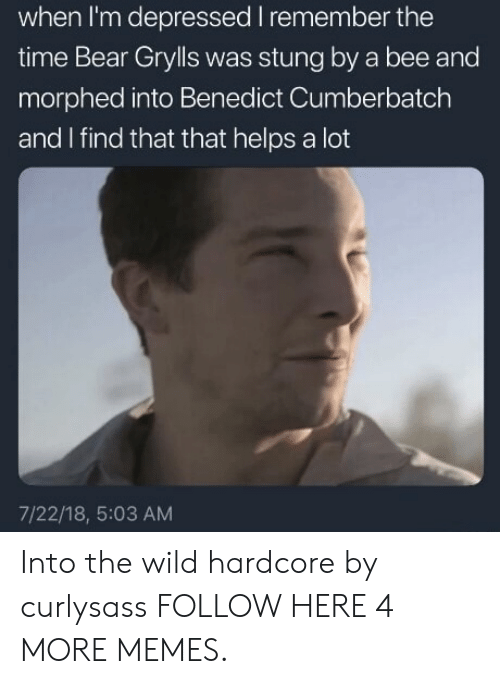 Benedict Cumberbatch: when I'm depressed I remember the  time Bear Grylls was stung by a bee and  morphed into Benedict Cumberbatch  and I find that that helps a lot  7/22/18, 5:03 AM Into the wild hardcore by curlysass FOLLOW HERE 4 MORE MEMES.