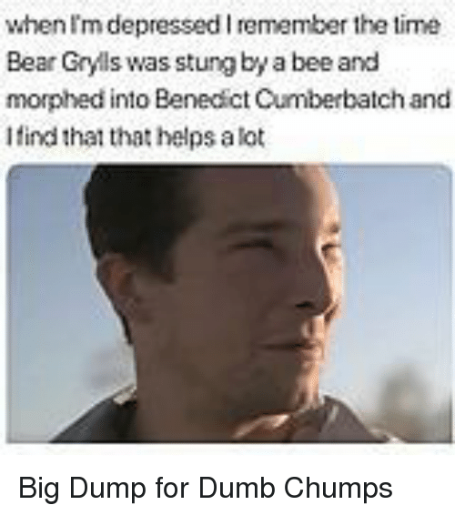 Benedict Cumberbatch: when Im depressed I remember the time  Bear Gryls was stung by a bee and  morphed into Benedict Cumberbatch and  Ifind that that helps alot Big Dump for Dumb Chumps