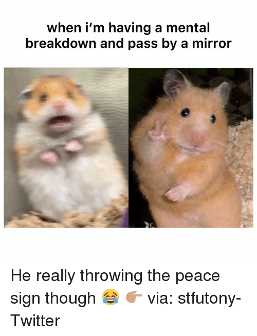 peace sign: when i'm having a mental  breakdown and pass by a mirror He really throwing the peace sign though 😂 👉🏽 via: stfutony-Twitter