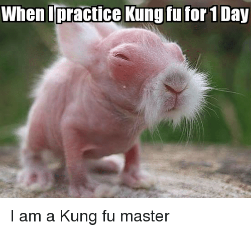 kung fu master: When Ipractice Kung fu for 1 Day