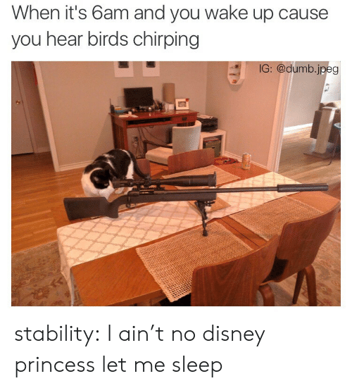 Chirping: When it's 6am and you wake up cause  you hear birds chirping  IG: @dumb.jpeg stability:  I ain't no disney princess let me sleep