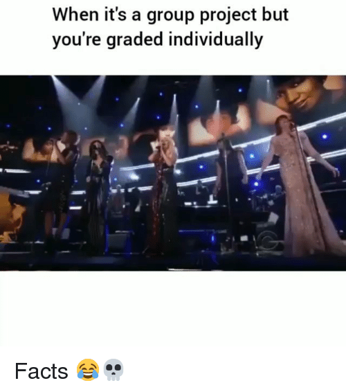 Facts, Funny, and Project: When it's a group project but  you're graded individually Facts 😂💀