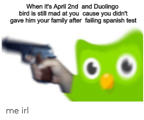 Still Mad At You: When it's April 2nd and Duolingo  bird is still mad at you cause you didn't  gave him your family after failing spanish test me irl