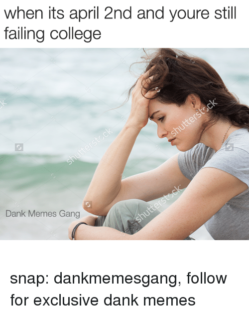College, Dank, and Memes: when its april 2nd and youre still  failing college  Dank Memes Gang snap: dankmemesgang, follow for exclusive dank memes