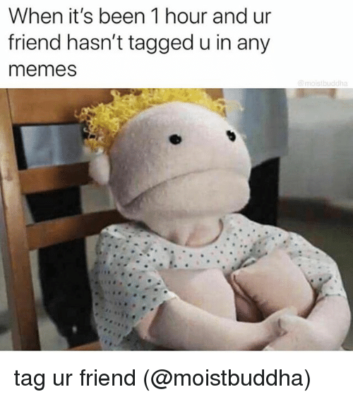 Memes, Tagged, and Been: When it's been 1 hour and ur  friend hasn't tagged u in any  memes  moistbuddha tag ur friend (@moistbuddha)