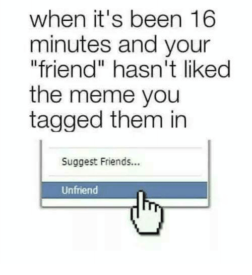 "suggestive: when it's been 16  minutes and your  ""friend"" hasn't likedd  the meme you  tagged them in  Suggest Friends...  Unfriend"