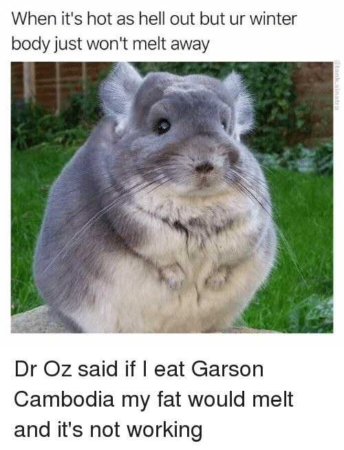 Funny, Winter, and Dr Oz: When it's hot as hell out but ur  winter  body just won't melt away Dr Oz said if I eat Garson Cambodia my fat would melt and it's not working