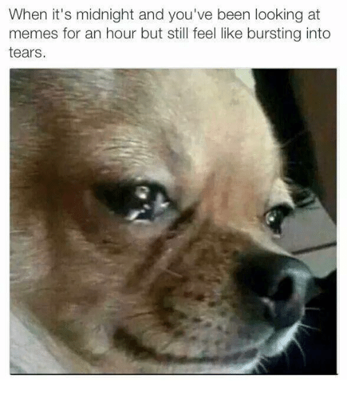burst into tears: When it's midnight and you've been looking at  memes for an hour but still feel like bursting into  tears