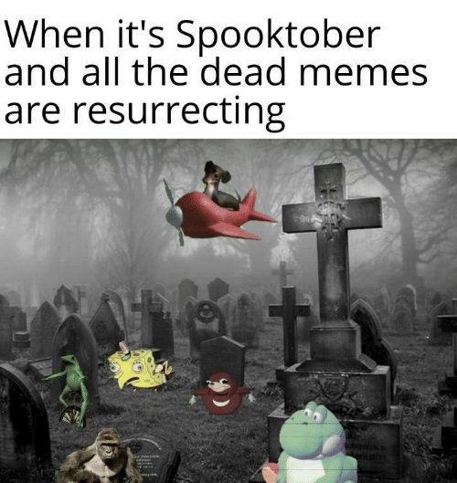 Dead Memes: When it's Spooktober  and all the dead memes  are resurrecting