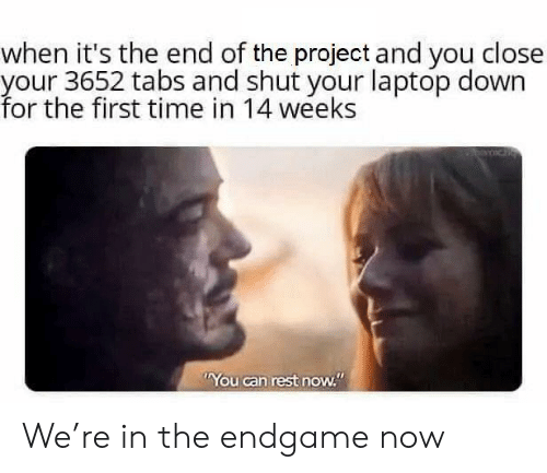 """endgame: when it's the end of the project and you close  your 3652 tabs and shut your laptop down  for the first time in 14 weeks  You can rest now."""" We're in the endgame now"""
