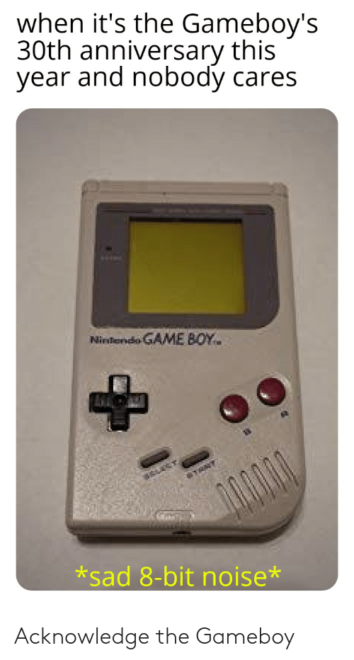 gameboys: when it's the Gameboy's  30th anniversary this  year and nobody cares  Ninfendo GAME BOY  *sad 8-bit noise* Acknowledge the Gameboy