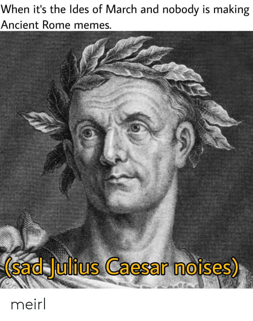 Julius Caesar: When it's the ldes of March and nobody is making  Ancient Rome memes  (sad Julius Caesar noises)  0 meirl