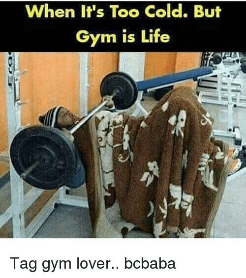 Gym, Life, and Memes: When It's Too Cold. But  Gym is Life Tag gym lover.. bcbaba