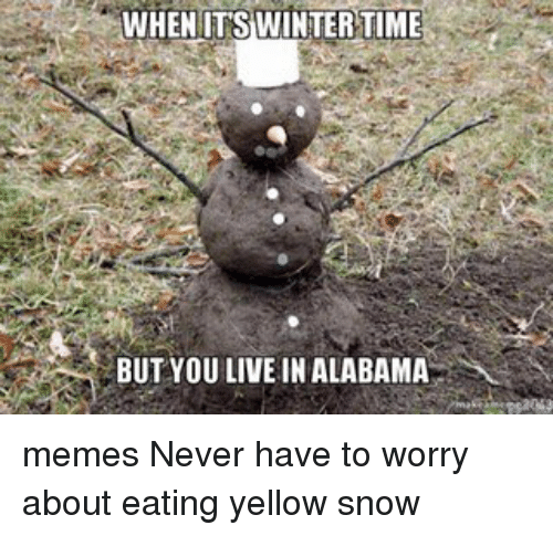 Memes, Alabama, and 🤖: WHEN ITS WINTER TIME  BUT YOU LIVE IN ALABAMA memes Never have to worry about eating yellow snow