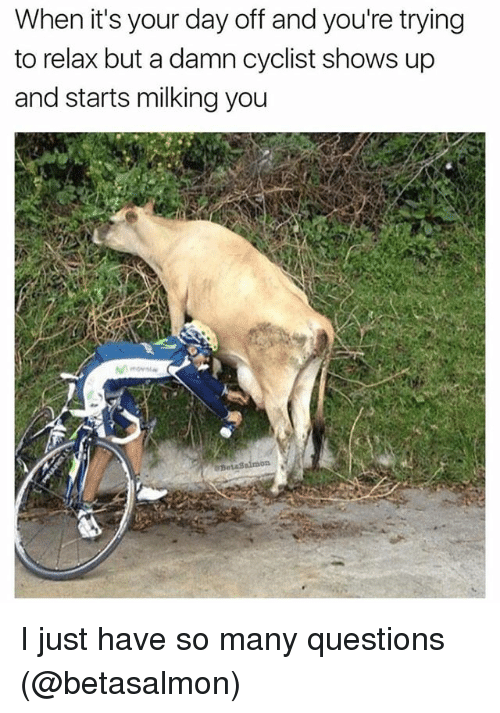 Funny, Questions, and Damned: When it's your day off and you're trying  to relax but a damn cyclist shows up  and starts milking you I just have so many questions (@betasalmon)