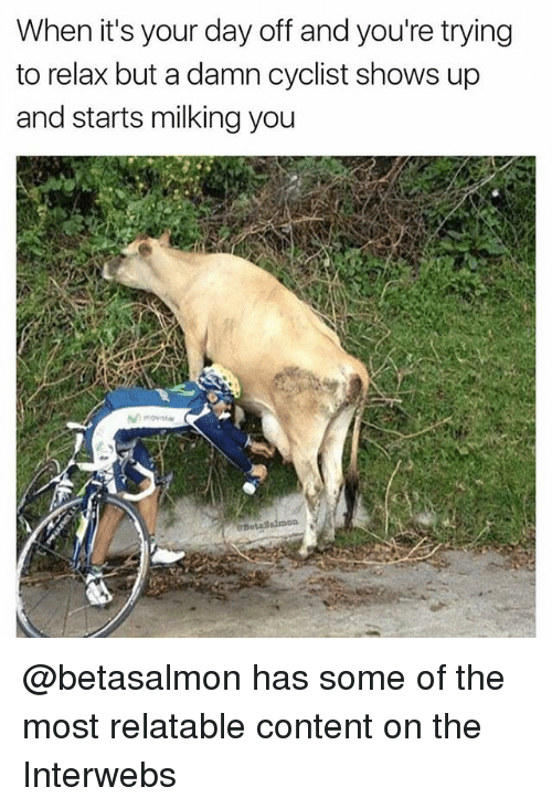 Relatable, Dank Memes, and Content: When it's your day off and you're trying  to relax but a damn cyclist shows up  and starts milking you @betasalmon has some of the most relatable content on the Interwebs