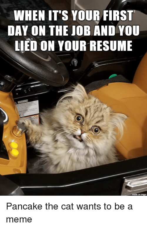 When It S Your First Day On The Job And You Lied On Your Resume On