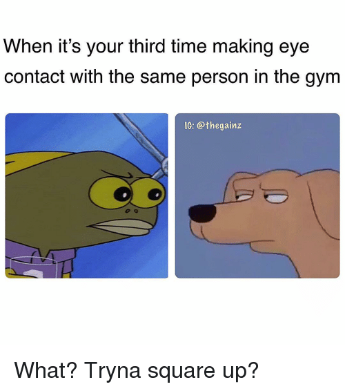 Square Up: When it's your third time making eye  contact with the same person in the gym  IG: @thegainz What? Tryna square up?