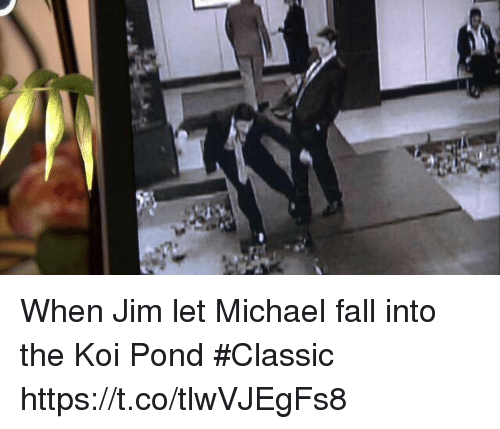 25 best memes about fall fall memes for Michael koi pond
