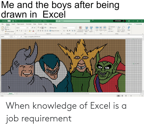 Knowledge: When knowledge of Excel is a job requirement