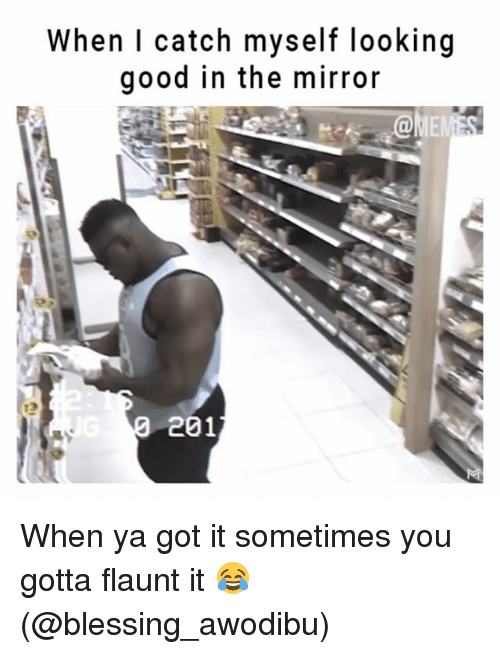 Memes, Good, and Mirror: When l catch myself looking  good in the mirror  NE  t3  201 When ya got it sometimes you gotta flaunt it 😂 (@blessing_awodibu)