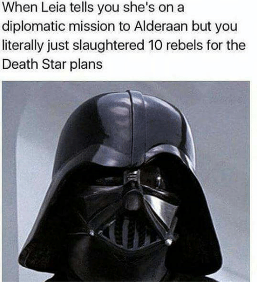 diplomat: When Leia tells you she's on a  diplomatic mission to Alderaan but you  literally just slaughtered 10 rebels for the  Death Star plans