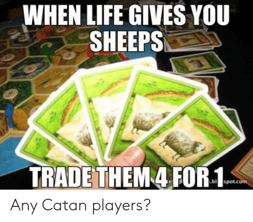 sheeps: WHEN LIFE GIVES YOU  SHEEPS  TRADETHEM 4 FOR-1 Any Catan players?