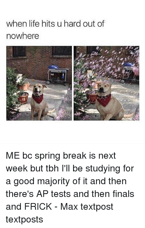 Finals, Frick, and Life: when life hits u hard out of  nowhere ME bc spring break is next week but tbh I'll be studying for a good majority of it and then there's AP tests and then finals and FRICK - Max textpost textposts