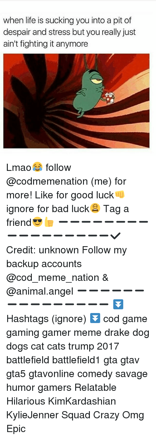 Despairate: when life is sucking you into a pit of  despair and stress but you really just  ain't fighting it anymore Lmao😂 follow @codmemenation (me) for more! Like for good luck👊 ignore for bad luck😩 Tag a friend😎👍 ➖➖➖➖➖➖➖➖➖➖➖➖➖➖➖➖➖✔ Credit: unknown Follow my backup accounts @cod_meme_nation & @animal.angel ➖➖➖➖➖➖➖➖➖➖➖➖➖➖➖ ⏬ Hashtags (ignore) ⏬ cod game gaming gamer meme drake dog dogs cat cats trump 2017 battlefield battlefield1 gta gtav gta5 gtavonline comedy savage humor gamers Relatable Hilarious KimKardashian KylieJenner Squad Crazy Omg Epic