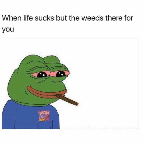 Memes, 🤖, and Weeds: When life sucks but the weeds there for  you