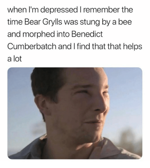 Benedict Cumberbatch: when l'm depressed remember the  time Bear Grylls was stung by a bee  and morphed into Benedict  Cumberbatch and I find that that helps  a lot