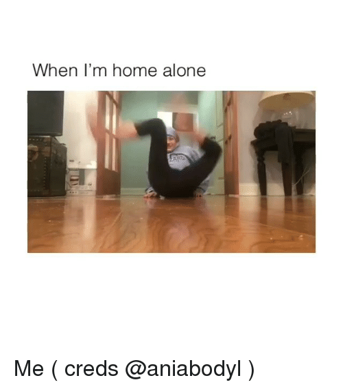 Being Alone, Home Alone, and Memes: When l'm home alone Me ( creds @aniabodyl )